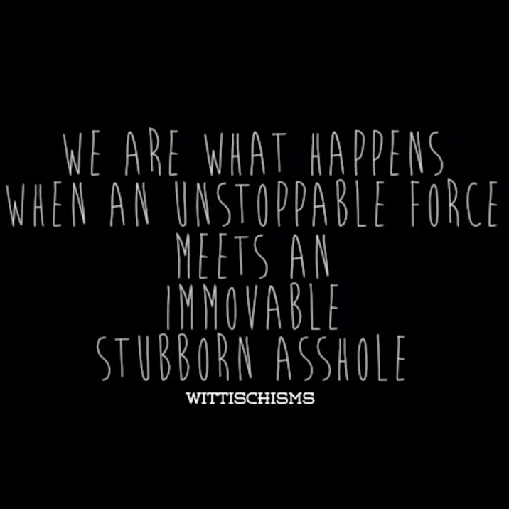 We Are What Happens When an Unstoppable Force Meets an Immovable Object